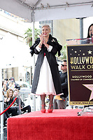 LOS ANGELES - FEB 5:  Pink, Alecia Moore at the Pink Star Ceremony on the Hollywood Walk of Fame on February 5, 2019 in Los Angeles, CA