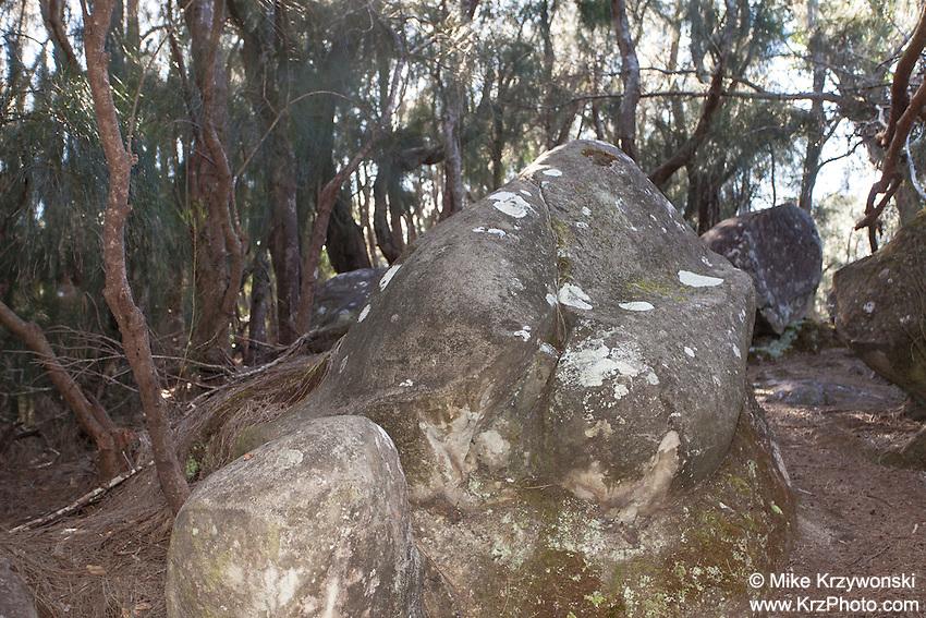 "Female Counterpart of Kaule o Nanahoa (""the penis of Nanahoa"") or Phallic Rock in Pala'au State Park, Moloka'i"