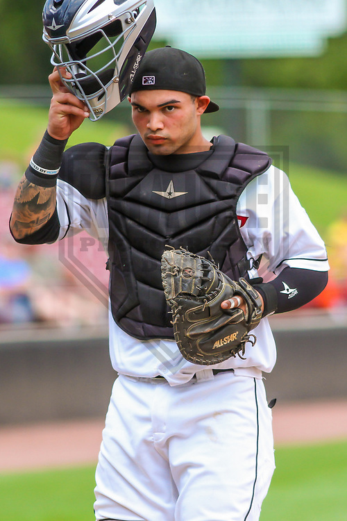 Wisconsin Timber Rattlers catcher Mario Feliciano (4) during a Midwest League game against the Burlington Bees on July 10, 2017 at Fox Cities Stadium in Appleton, Wisconsin.  Burlington defeated Wisconsin 6-3. (Brad Krause/Krause Sports Photography)