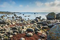 Stenar på en strand vid Sandhamn i Stockholms skärgård