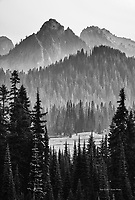 Tatoosh Range, Mount Rainier National Park, Washington