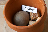 Plant pot with soil sample to illustrate different soil types, part of a series: stone rock pebble, graves Chateau Villerambert-Julien near Caunes-Minervois. Minervois. Languedoc. Terroir soil. France. Europe. Soil with stones rocks.