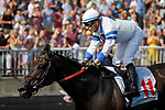 August 10, 2019 : Dabo, ridden by Jose Valdivia Jr., wins the Bruce D. Memorial Stakes during Arlington Million Day at Arlington International Racecourse in Arlington Heights, Illinois. Jon Durr/Eclipse Sportswire/CSM