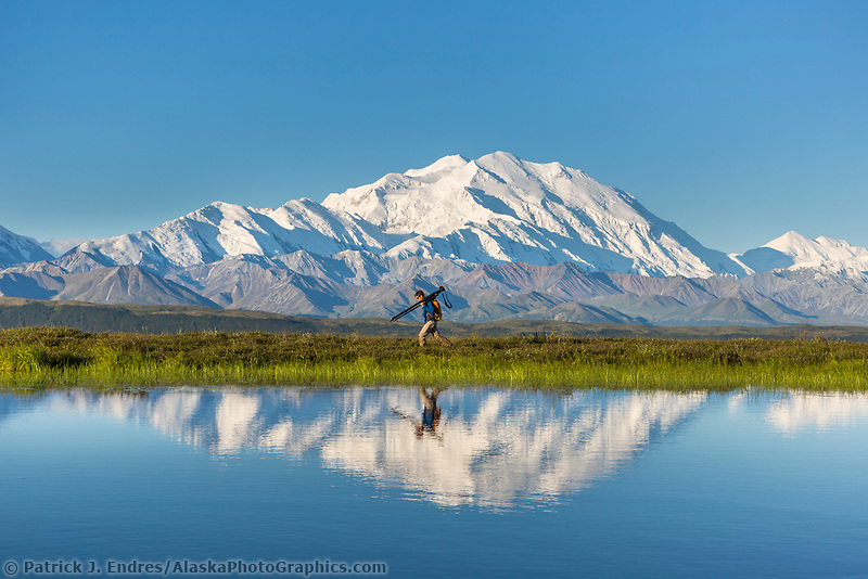 Photographer Patrick Endres hikes along a tundra pond with Mt Denali in the distance, Denali National Park, Interior, Alaska