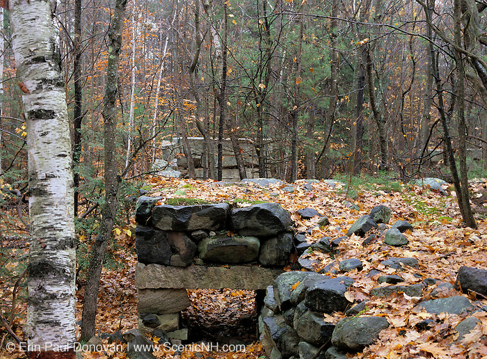 The remnants of an abandoned granite foundation from the 19th-20th century mountain settlement in the forest of Pawtuckaway State Park in Deerfield, New Hampshire.