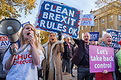 Leave Means Leave pro-Brexit protesters demonstrate outisde a critical Downing Street Brexit Cabinet meeting, Whitehall, Westminster London.