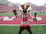 Wisconsin Badgers mascot Bucky Badger during an NCAA college football game against the Indiana Hoosiers on November 13, 2010 at Camp Randall Stadium in Madison, Wisconsin. The Badgers won 83-20. (Photo by David Stluka)