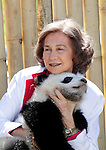 Spain's Queen Sofia plays with seven-months-old panda cubs Po and De De during her visit to Madrid's Zoo on March 29, 2011 in Madrid. The two pandas born on September 7, 2010 in Madrid, are the first giant panda twins to be born by artificial insemination outside China...Photo: Alex Cid-Fuentes / ALFAQUI...