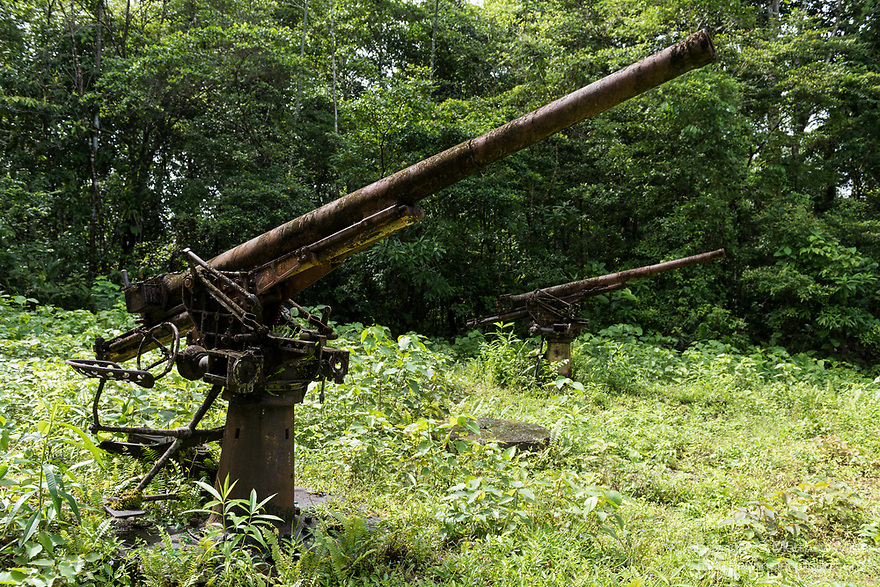Munda, Western Province, Solomon Islands; Japanese anti-aircraft guns sitting in the jungle, where they were left at the end of World War II