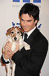 BEVERLY HILLS, CA - MARCH 24: Ian Somerhalder and Uggie the Dog attend the 26th Genesis Awards at The Beverly Hilton Hotel on March 24, 2012 in Beverly Hills, California.