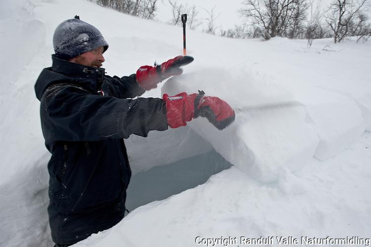 Mann dekker taket på kantgrop med snøblokker. ---- Man putting roof on a snow bivouac.
