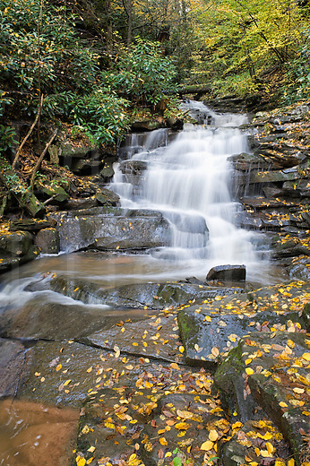 Waterfall in the woods surrounded by fallen yellow leaves, Rainbow Falls in Trough Creek State Park near Raystown Dam, Huntingdon, Pennsylvania, PA, USA.
