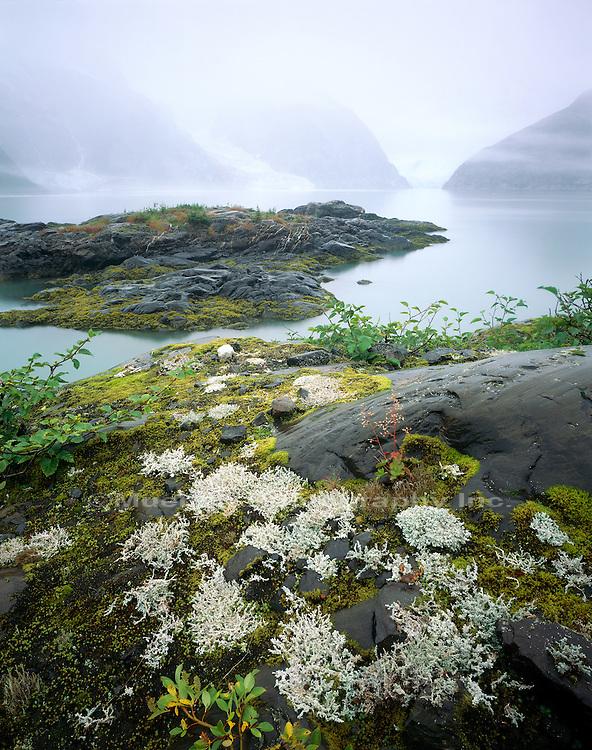 Northwest arm Kenai Fjords NP  ALASKA
