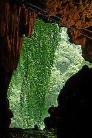 Entrance to Grutas de Lanquin caves, Alta Verapaz, Guatemala.