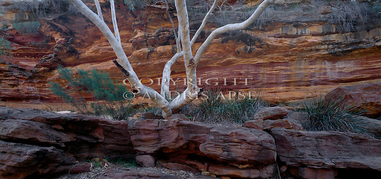 Rock formations in Kalbarri National Park. Western Australia. Australia.