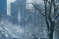 Winter, snow, Public Garden, Boston, MA