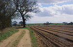 ADD2Y7 Country lane and ploughed field Butley Suffolk England