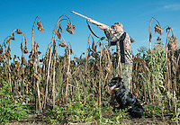 Sean Simmons dove hunting with his dog Maverick on Kansas State Wildlife fields near Wamego, Kansas, Sunday, September 1, 2013. Opening day is known for being a festive day of hunting with family and friends. <br /> <br /> Photo by Matt Nager