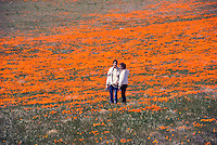 California Orange Poppy Field Teenager portrait