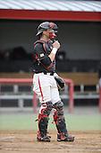 baseball-Team Images 2010