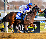 December 7th, 2019:  Spiced Perfection won the  $250,000 G3 Go For Wand with Javier Castellano in the irons and trained by Peter Miller.  The 80th running was at Aqueduct race track in Ozone Park, New York. Dan Heary/Eclipse Sportswire/CSM
