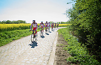 Team Katusha training over the cobbles with Luca Paolini (ITA/Katusha) showing the way<br /> <br /> 2014 Paris - Roubaix reconnaissance