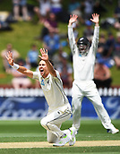 3rd December 2017, Wellington, New Zealand;  Trent Boult appeals unsuccessfully.<br /> Day 3. New Zealand Black Caps v West Indies. 1st test match of the ANZ International Cricket Season 2017/18 season. Basin Reserve, Wellington,