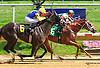 Divine Excitement winning at Delaware Park on 7/11/15