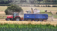 Despite fears early on in the lockdown, caused by the Covid-19 pandemic, the UK Harvest is well under way. Farmers are working all kinds of hours to ensure the crops are cut, harvested and baled. These fields in countryside outside Bedford see wheat being cut by a combine harvester and then bales of straw being scooped up on an adjoining field. Great Barford, Beds. Saturday July 18th 2020<br /> <br /> Photo by Keith Mayhew