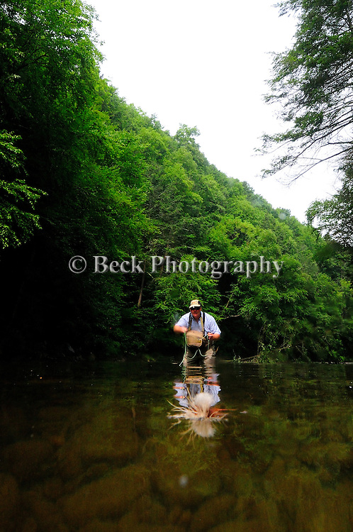 Fly fishing with a dry fly