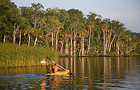 CHASSAHOWITZKA, FLORIDA, USA - JULY 1, 2007: A kayaker paddles down the Chassahowitzka River before flows into the Gulf of Mexico in Citrus County, Florida. Photo by Matt May
