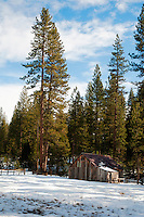 A deserted cabin in the Yosemite wilderness