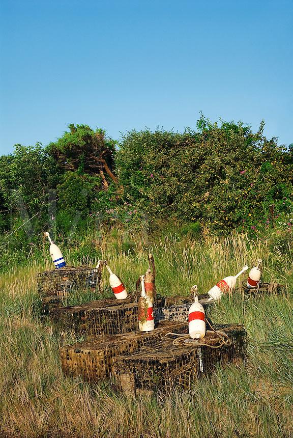 Lobster traps, Cape Cod, Massachusetts, USA