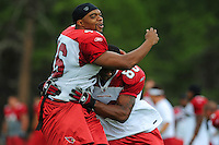 Jul 31, 2009; Flagstaff, AZ, USA; Arizona Cardinals fullback (46) Tim Castille does a tackling drill with wide receiver (80) Early Doucet during training camp on the campus of Northern Arizona University. Mandatory Credit: Mark J. Rebilas-