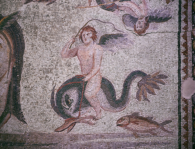 Roman Mosaic - close up of Eros riding a dolphin. The Oceanos & Tethys Mosaic, fom The House of Oceanos, Zeugma.  2nd - 3rd century AD. Zeugma Mosaic Museum, Gaziantep, Turkey.<br /> <br /> The Oceanos and Tethys Mosaic is the floor mosaic of the shallow pool of the House of Oceanos. In this mosaic, which belongs to the Early Roman Empire Period, Oceanos, the river god who is the origin of life, and his wife Tethys are represented. At the middle of the mosaic which is surrounded by a geometric triple tress borders there are Oceanos and his wife Tethys. Around them there are Eros figures riding various species of fish and dolphins symbolising the abundance of the sea. The most represented attributes of Oceanos are snake and fish.
