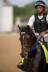 LOUISVILLE, KY - MAY 02: My Boy Jack gallops in preparation for the Kentucky Derby at Churchill Downs on May 2, 2018 in Louisville, Kentucky. (Photo by Alex Evers/Eclipse Sportswire/Getty Images)
