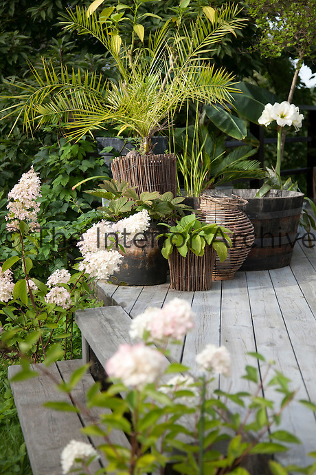 Steps surrounded by blooming flowers lead down from the terrace into the garden