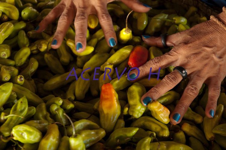 Carmézia, índia Macuxi, prepara a damorida, comida indígena a base de peixes ou caça temperada com forte molho apimentado.<br /> Comunidade indígena  Macuxí, Raposa Serra do Sol.<br /> Normandia, Roraima, Brasil.<br /> Foto Paulo Santos<br /> <br /> 2004