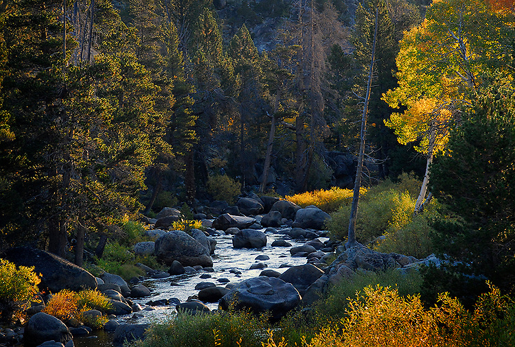 Carson River, West Fork