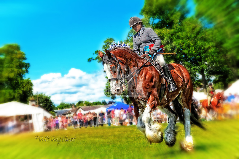 Banchory show dsider.co.uk online magazine, photo courses