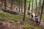 Group hiking in Loyalsock forest.