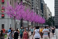 ATENÇÃO EDITOR FOTO EMBARGADA PARA VEÍCULOS INTERNACIONAIS - SAO PAULO, SP, 08 DE DEZEMBRO DE 2012 - NATAL ILUMINADO 2012: Árvores enfeitam o Viaduto do Chá em frente a sede da Prefeitura no Vale do Anhangabaú, região central da cidade ficará em exposição até o dia 06/01. FOTO: LEVI BIANCO - BRAZIL PHOTO PRESS