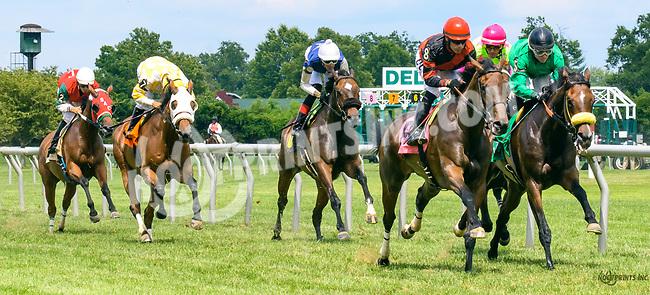 Ellie Girl winning at Delaware Park on 7/1/17