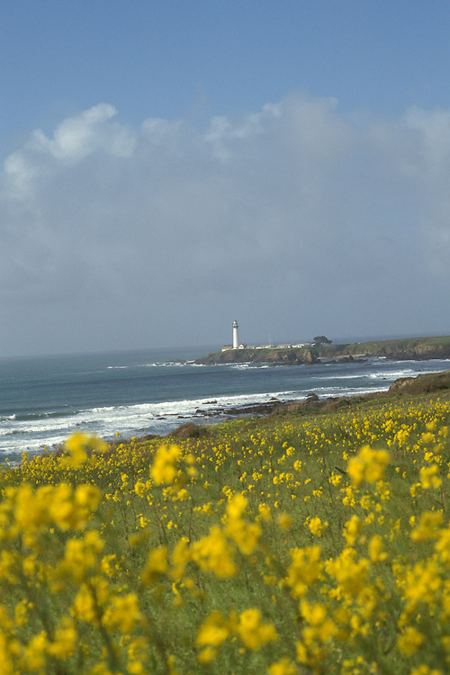 CA: Pigeon Point, California, lighthouse 2005 .Image: capigeon116.Photo Copyright: Lee Foster, lee@fostertravel.com, www.fostertravel.com, (510) 549-2202..