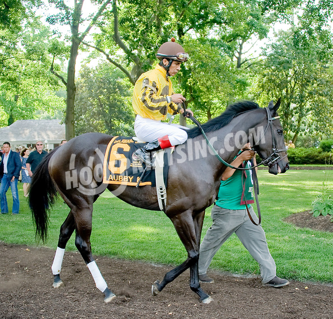 Aubby K before The Delaware Oaks (gr 2) at Delaware Park on 7/14/12