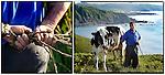 ASTURIAS + JOSE RAMÓN MENENDEZ (Y BENIA). Mi nombre es José Ramón Menendez, tengo 46 años. Soy ganadero, nací y resido en Viodo, Cabo de Peñas (Asturias). Soltero. Trabajo en el campo desde siempre, el día a día en él es como cualquier trabajo al que le prestes dedicación alternando las labores en el campo (siega, ensilado, recogida forraje, etc.) con el trabajo de la ganadería, donde no existen fiestas, pues los animales no saben de horarios. ¿Ideología política? pues que más que en los políticos creo en las personas. (c) GREENPEACE HANDOUT/PEDRO ARMESTRE- NO SALES - NO ARCHIVES - EDITORIAL USE ONLY - FREE USE ONLY FOR 14 DAYS AFTER RELEASE - PHOTO PROVIDED BY GREENPEACE - AP PROVIDES ACCESS TO THIS PUBLICLY DISTRIBUTED HANDOUT PHOTO TO BE USED ONLY TO ILLUSTRATE NEWS REPORTING OR COMMENTARY ON THE FACTS OR EVENTS DEPICTED IN THIS IMAGE