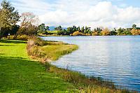 Lake in the Waikato Region Near Taupo, North Island, New Zealand