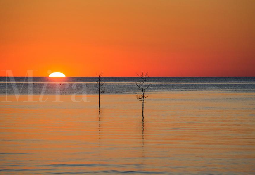 Rock Harbor sunset, Orleans, Cape Cod, USA