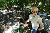 NWA Democrat-Gazette/DAVID GOTTSCHALK  Elfi Davis, surveys Thursday, May 25, 2017, the damage and debris left behind by the flooding of a creek next her home at 23000 Salem Springs Road in rural Washington County. The series of recent rains have flooded the creek eroding away the stream bank and flooding her property.