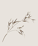 Bird perching on a bamboo branch with leaves delicate artistic design based on Japanese Zen ink painting artwork. Brown on light beige ivory background.